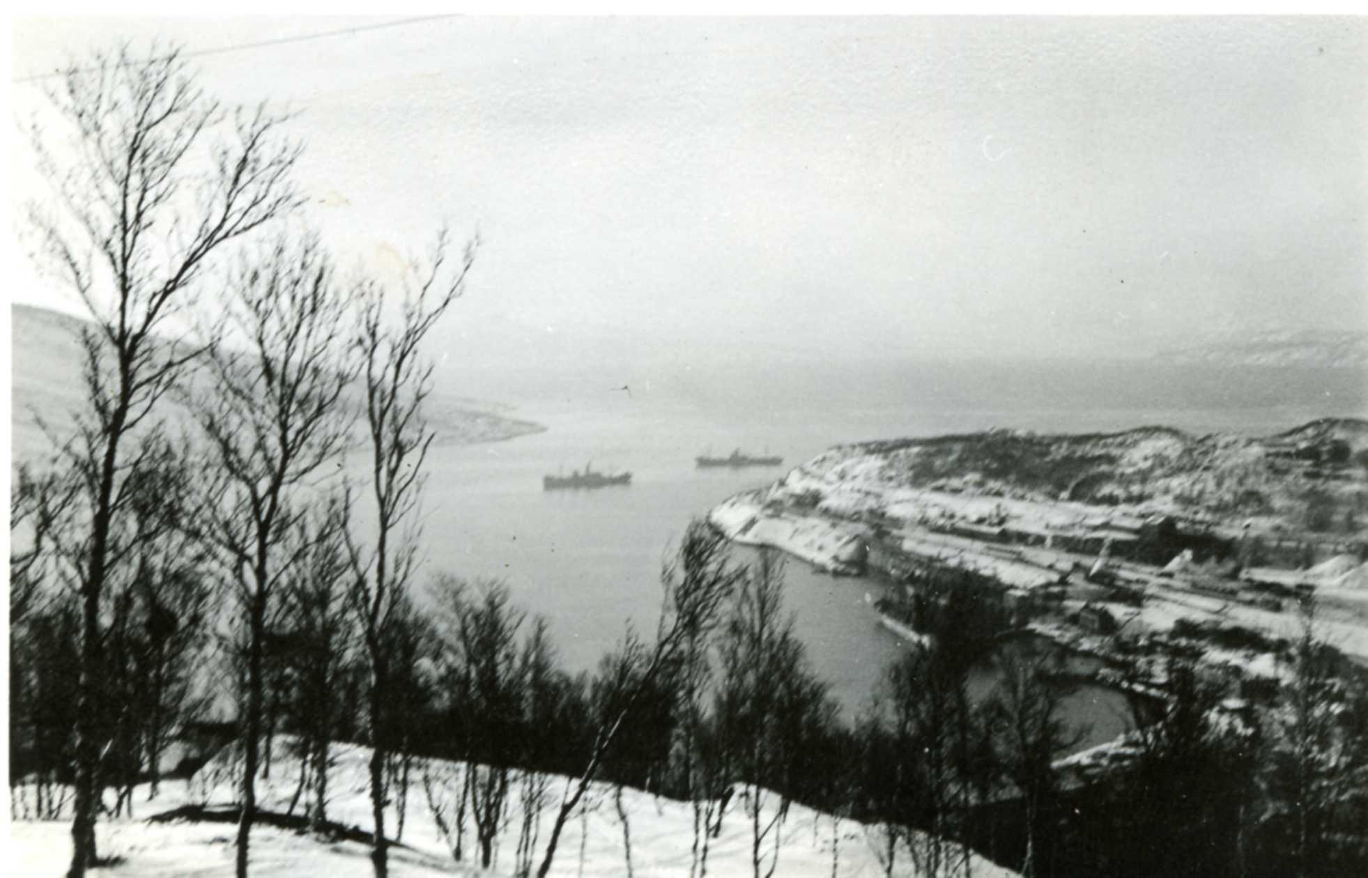 Narvik 3
